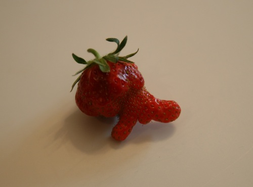 Strange shaped strawberry